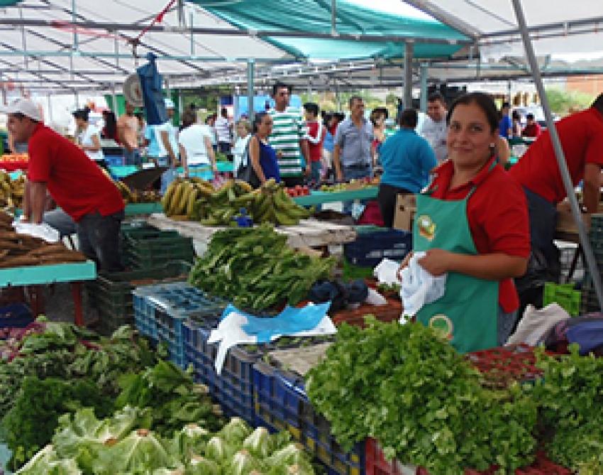 Pastoral social de Cartago crea feria del agricultor en línea
