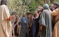 Sagradas Escrituras: La higuera seca