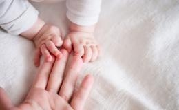 Columna Arzobispal: La maternidad: don y vocación